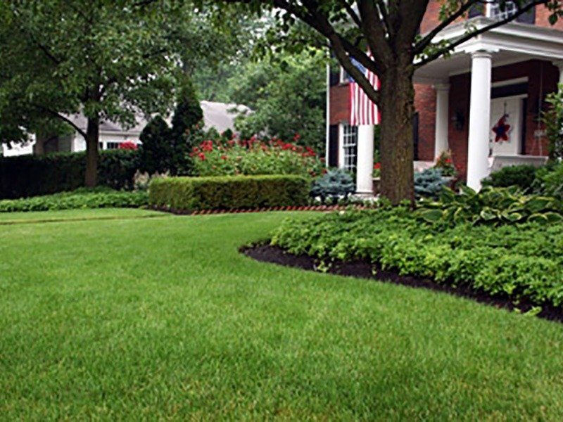 Creative front yard landscaping for a flawless look