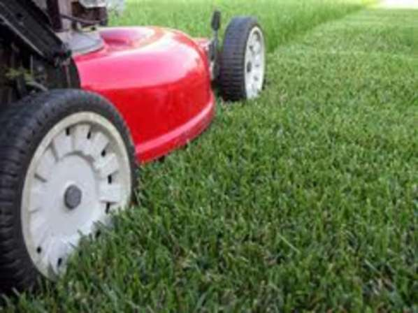 We do lawnmowing and lawn maintenance services so you don't have to