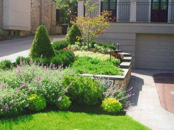 Lawn irrigation and lawn care for beautiful shrubs