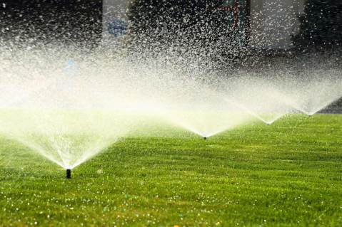 Sprinkler system management services
