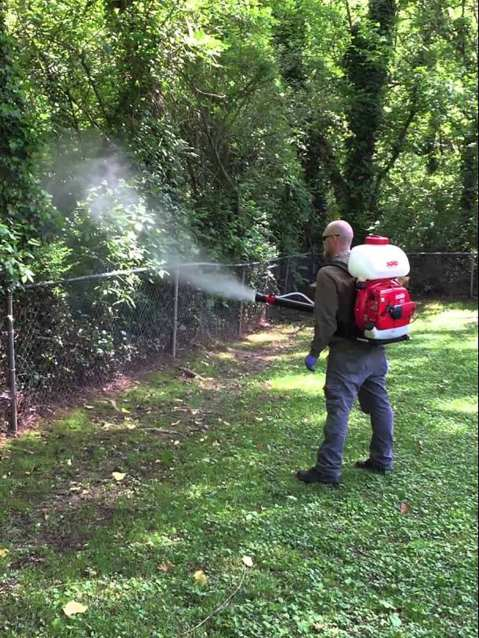 Mosquito control treatment