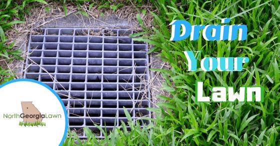 yard drain installation company