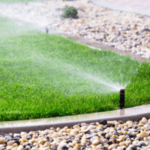 winterize reduce your watering