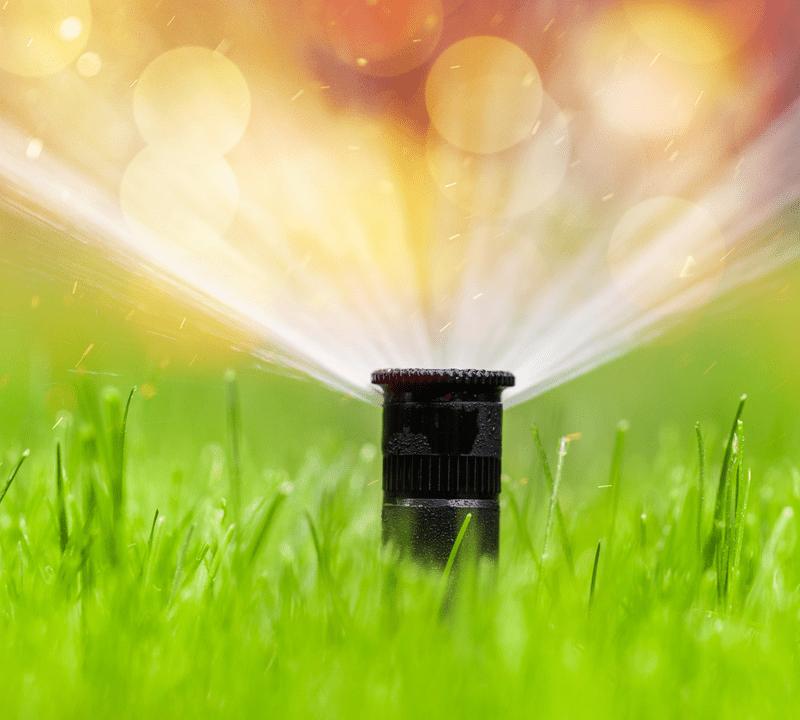 pop up sprinkler